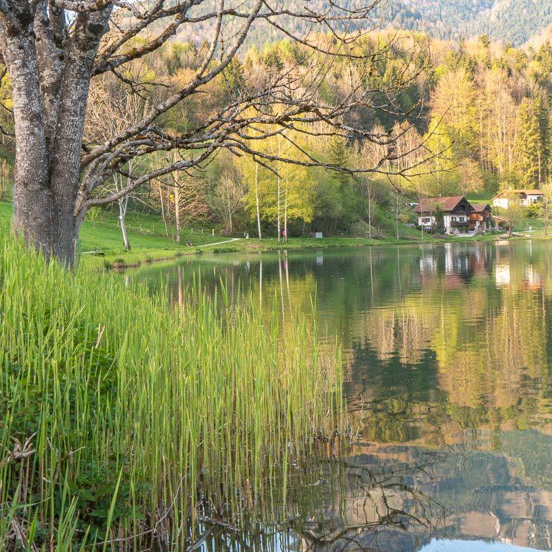 Blick vom Seeweg am Westufer des Wössner Sees